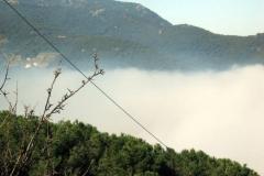 nebbia (15)