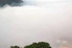 nebbia (16)