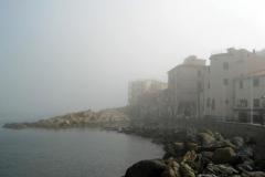 nebbia (17)
