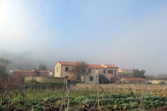 nebbia (9)