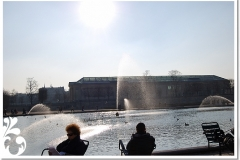 parigi febb 08 (20)