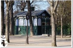 parigi febb 08 (24)
