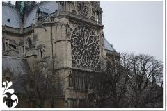 parigi febb 08 (51)