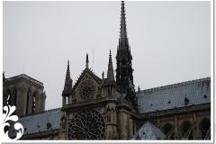 parigi febb 08 (57)