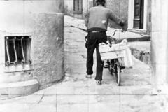 miste a Mattera (66)