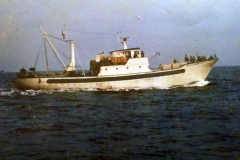 pierosansone22