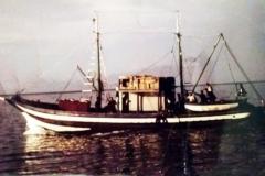 pierosansone6