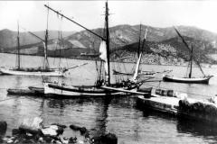 53 navicello  -pinco- cutter e tartana a  marina di campo